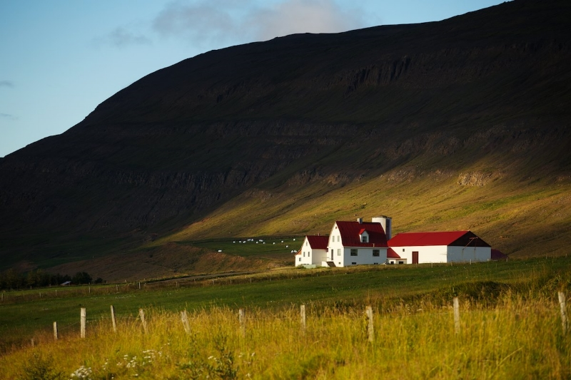 michael-kelley-iceland-akureyri-farm