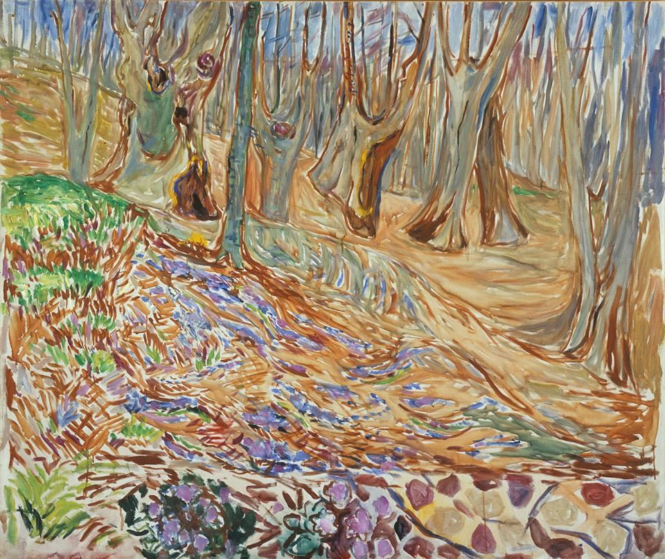 İlkbaharda Elm Ormanı, Elm Forest in Spring