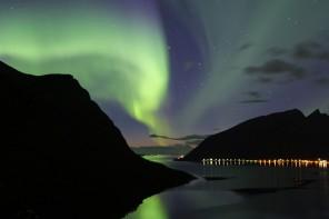 Kuzey Işıkları ve Kambur Balinalar