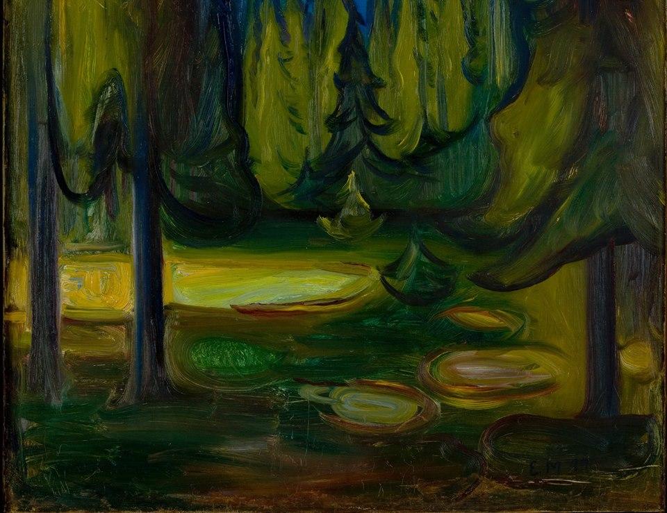 Kara Ladin Ormanı, Dark Spruce Forest