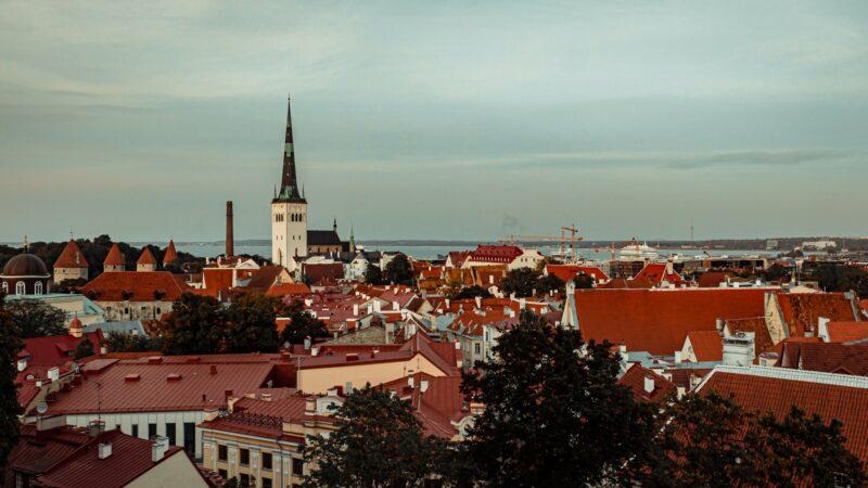 estonya dijital vatandaşlık