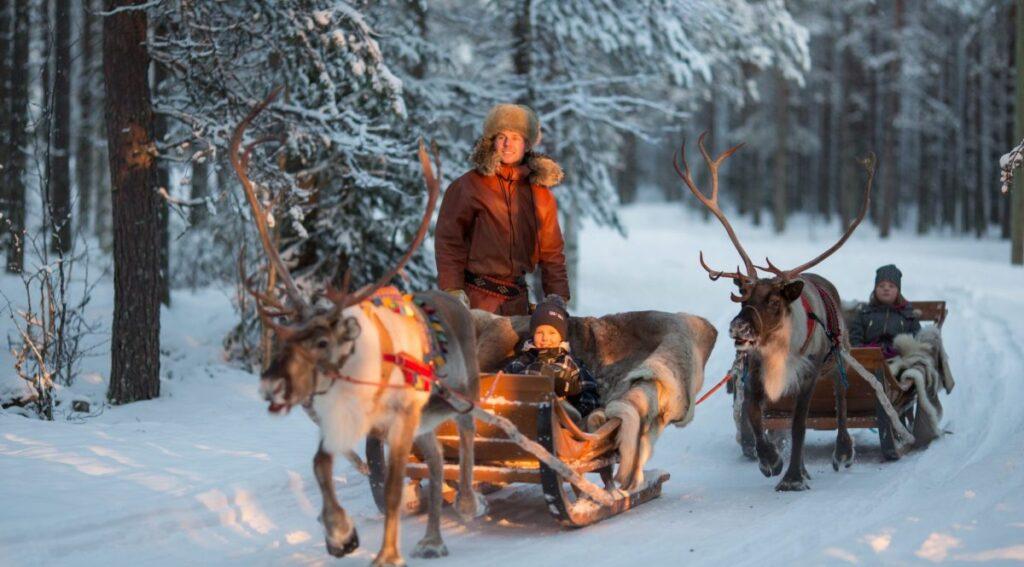 Santa Claus Köyü Ren Geyiği Turları